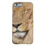Adorable Lion Barely There iPhone 6 Case