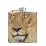 Adorable Lion Hip Flask