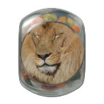 Adorable Lion Jelly Belly Candy Jar