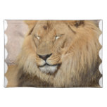 Adorable Lion Placemat