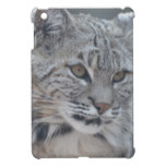 Amazing Bobcat iPad Mini Cover