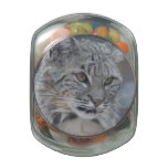 Amazing Bobcat Jelly Belly Candy Jar
