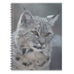 Amazing Bobcat Notebook