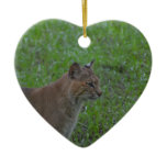 Bobcat Ceramic Ornament