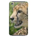 Cheetah Attack iTouch Case