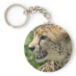 Cheetah Attack Keychain