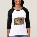 Cheetah Cat Baseball Shirt