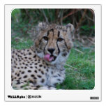 Cheetah Licking His Chops Wall Sticker