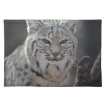 Creeping Bobcat Cloth Placemat