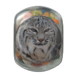 Creeping Bobcat Glass Candy Jar