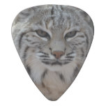 Creeping Bobcat Guitar Pick