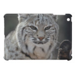 Creeping Bobcat iPad Mini Cover