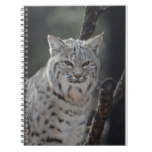 Creeping Bobcat Notebook