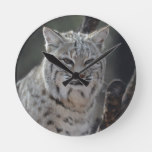 Creeping Bobcat Round Clock