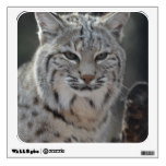 Creeping Bobcat Wall Sticker