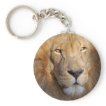 Lion Images Keychain