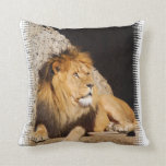Lion Photo Pillow