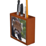 Prowling Red Panda Pencil/Pen Holder