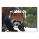 Prowling Red Panda Table Number