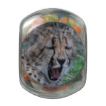 Sleepy Cheetah Cub Glass Jar