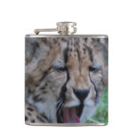 Sleepy Cheetah Cub Hip Flask