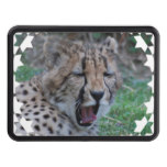 Sleepy Cheetah Cub Hitch Cover