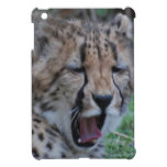 Sleepy Cheetah Cub iPad Mini Case