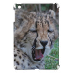 Sleepy Cheetah Cub iPad Mini Cover