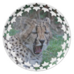 Sleepy Cheetah Cub Melamine Plate