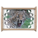 Sleepy Cheetah Cub Serving Tray