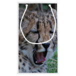 Sleepy Cheetah Cub Small Gift Bag