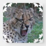 Sleepy Cheetah Cub Square Wall Clock