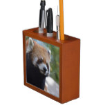 Sweet Red Panda Bear Desk Organizer