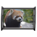 Sweet Red Panda Bear Serving Tray