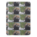 Sweet Red Panda Bear Swaddle Blanket