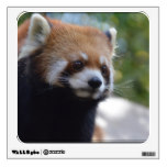 Sweet Red Panda Bear Wall Decal