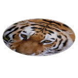 Tiger Cutting Board