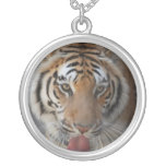 Tiger Kisses Necklace