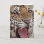 Year of the Tiger Greeting Card